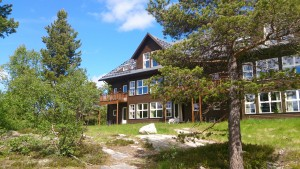 Appartment-Hotel in Hovden